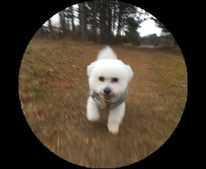 chloe_running